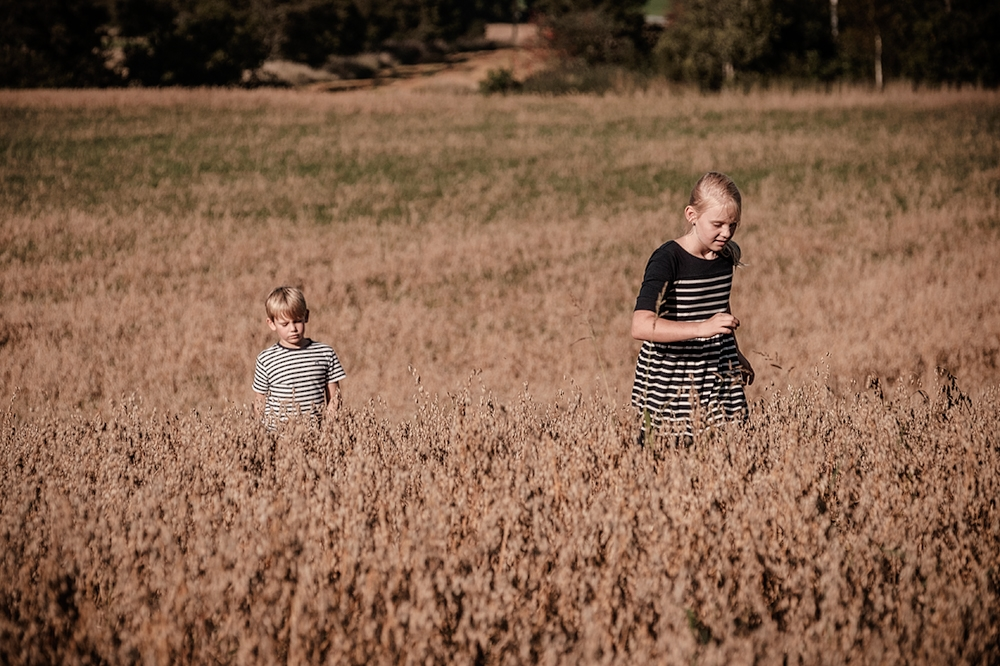 Ella & Emil : Fields of gold